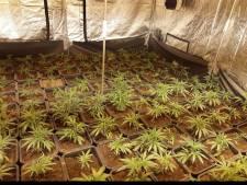 Politie arresteert vier verdachten in groot drugsonderzoek