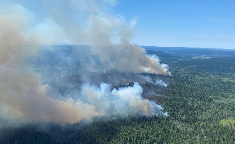 Een grote bosbrand ten zuidwesten van het Deltamaar in British Columbia, Canada op vrijdag 2 juli. Beeld AFP