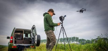 Marc speurt met drone naar reekalfjes in gewas: 'We willen niet dat ze worden doodgemaaid'