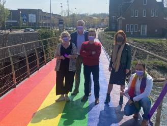 """Stad Diest stelt eerste regenboogbrug in België voor: """"We konden geen duidelijker toegangspoort tot de stad hebben"""""""