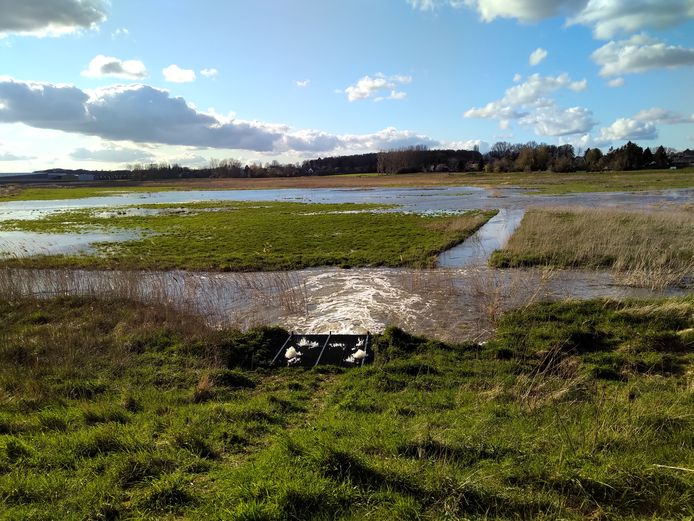 Met een sluis is men nu al bezig met het stelselmatig onder water zetten van het Klein Broek. Volgend jaar zal dit op natuurlijke wijze gebeuren met een overloopdijk.