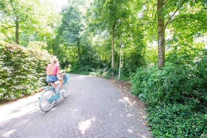 Het ging al meerdere keren mis in deze blinde bocht in de Bleekweg in Nijverdal. Vrijdag was het opnieuw raak.