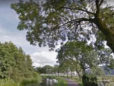 Spannende dagen aan Trekvaart IJsselmuiden: rechter besluit deze week over essenkap