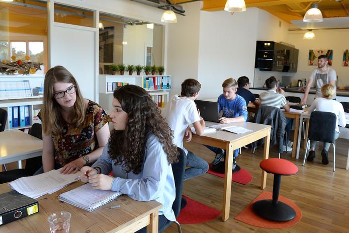 Aan de zomerschool in 2016 in Boxmeer deden dertien leerlingen mee. Iedereen 'slaagde' toen.
