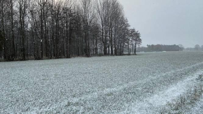 Aprilse grillen zorgen voor sneeuwtaferelen in Zoersel