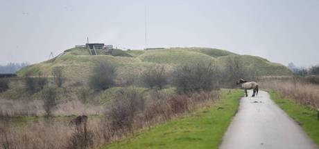 Creemers tijdelijk directeur Fort Pannerden