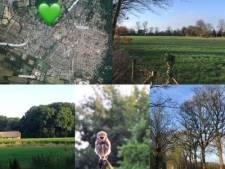 Petitie voor behoud natuur Husselsesteeg in Putten