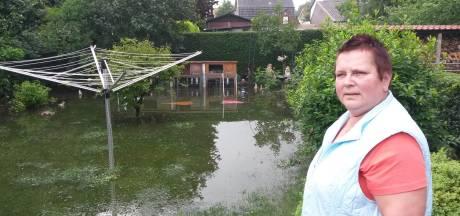 Someren wil geen water meer in huizen: Aanleg waterbergingen en geulvormige wegen in plaats van bolle straten