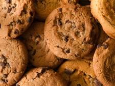 Inbrekers eten koekjes bij scouting in Asten