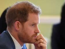 Ces photos d'enfance du prince Harry qui mettent à mal ses déclarations sur sa famille