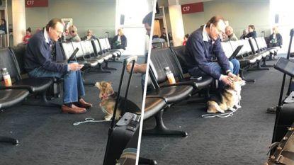 Hondje 'voelt' dat onbekende man een groot verlies heeft geleden en gaat hem spontaan troosten