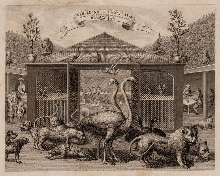 Afbeelding van de binnenplaats met wilde dieren van de herberg Blaauw Jan op de Kloveniersburgwal. Beeld Stadsarchief
