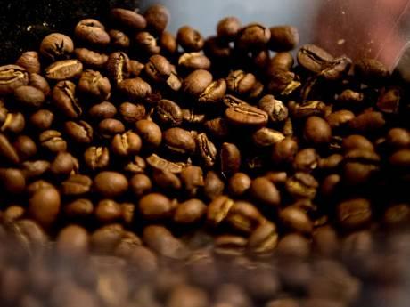 Haagse koffie scoort als 'eennabeste' in top 100