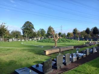 Kinderbegraafplaats weer toegankelijk na aanleg sterrenweide