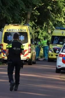 Celstraffen geëist voor ruzie op Orthen met riek, knuppel en steigerpijp: 'Ik heb hem amper geraakt'