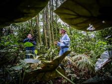 Filmpjes van Burgers' Zoo gaan de hele wereld over: 'We zijn een uitgeverij van wetenswaardigheden'
