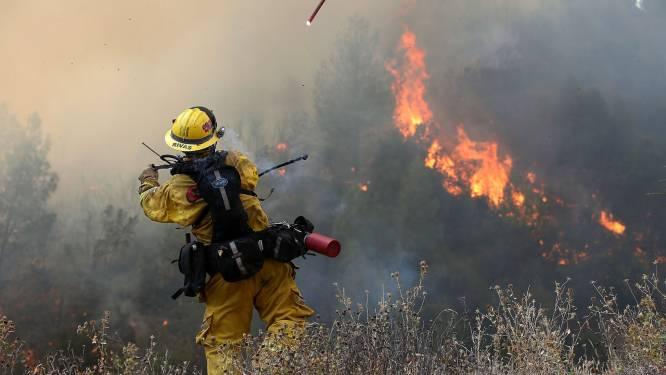 Brandweer krijgt bosbrand in Californië niet onder controle