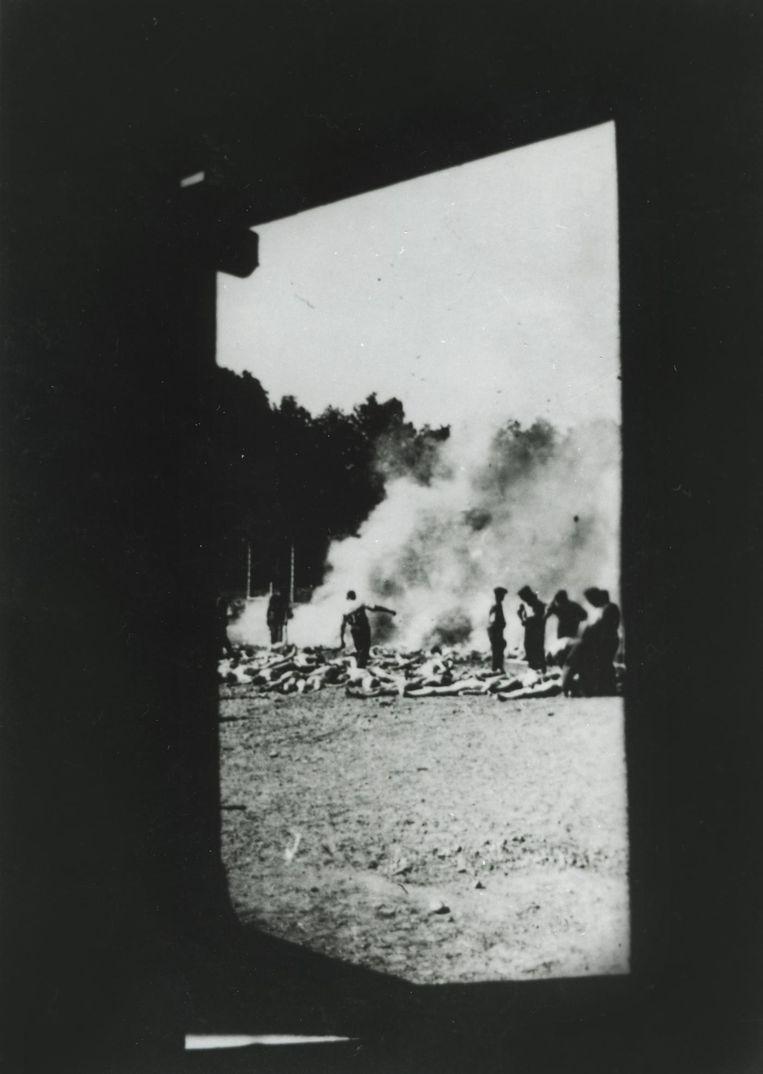 Een van de afgeplakte foto's die de gruwelen uit Auschwitz tonen Beeld Alberto Errera
