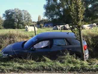 Automobilist (75) kritiek nadat hij onwel werd achter het stuur en boom ramt