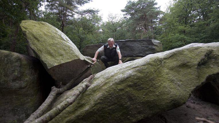 Boswachter Geerling Kruidhof van Staatsbosbeheer bij een beschadigd hunebed. Beeld Nederlandse Freelancers