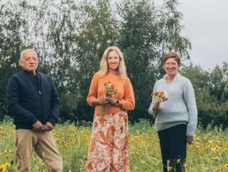 Gemeente opent bloemenplukweide: inwoners mogen er elk tien veldbloemen plukken