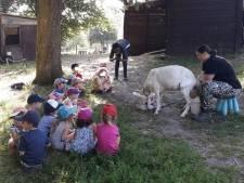 """Appel à l'aide à la Ferme des Enfants: """"Nous n'imaginons pas nous séparer de nos animaux"""""""
