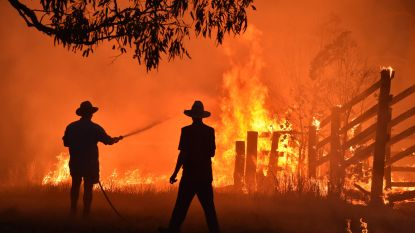 Al 1,1 miljoen hectare grond verwoest bij bosbranden in Australië