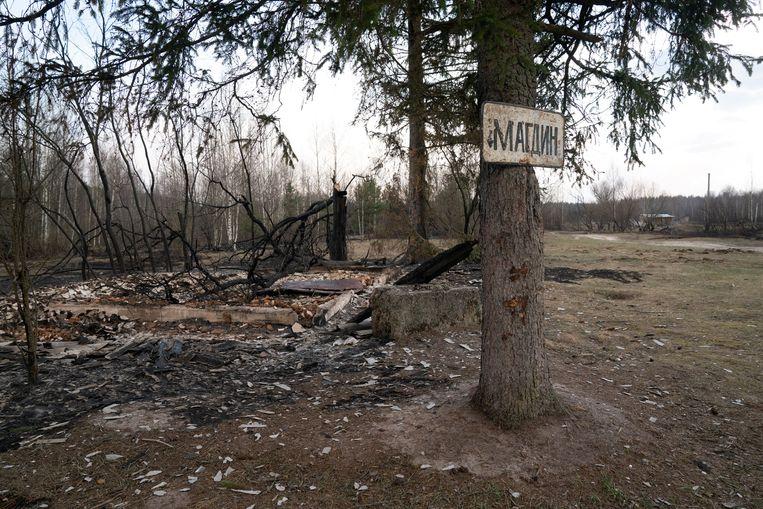 Een verbrand huis in het bos in de buurt van Tsjernobyl.  Beeld REUTERS