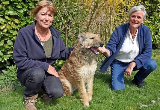 Inge De Belder (l) en Corine Kisling (r) maken sieraden van duurzame materialen, onder de naam Oda. De Laekense herder van Corine vormde de inspiratie voor het project én ze helpt mee.