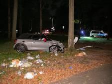 Auto botst tegen boom bij Heelsum, maar de bestuurder slaat op de vlucht