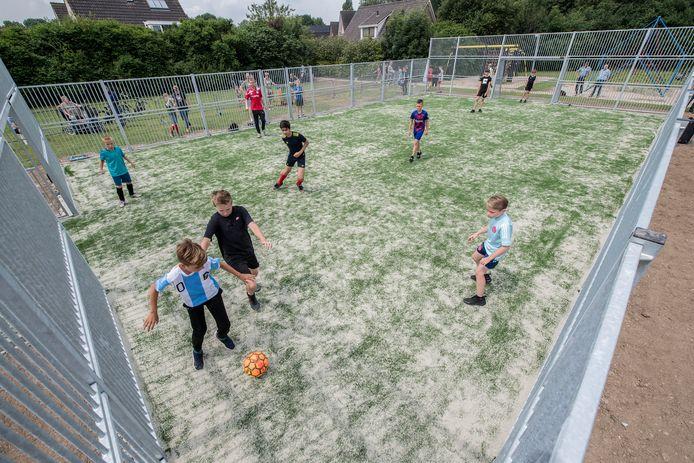 De Dodewaardse jeugd nam de voetbalkooi zaterdag dankbaar in gebruik met een toernooi.