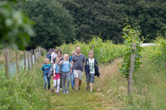 Passage van de wijngaard in 2019.