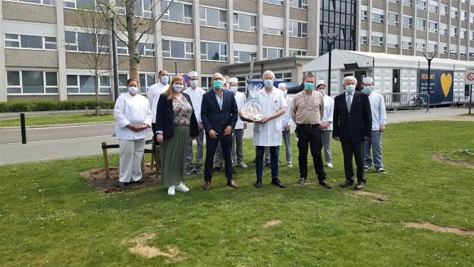 Geels Hartje bestaat 35 jaar: leerlingen van Sint Jozef Geel bakken 2.000 koekjes voor ziekenhuispersoneel