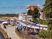 Snöpen, autoluwe Welle en de markt op tijdens opbouw: zes tips van 'mister boekenmarkt' Hein te Riele