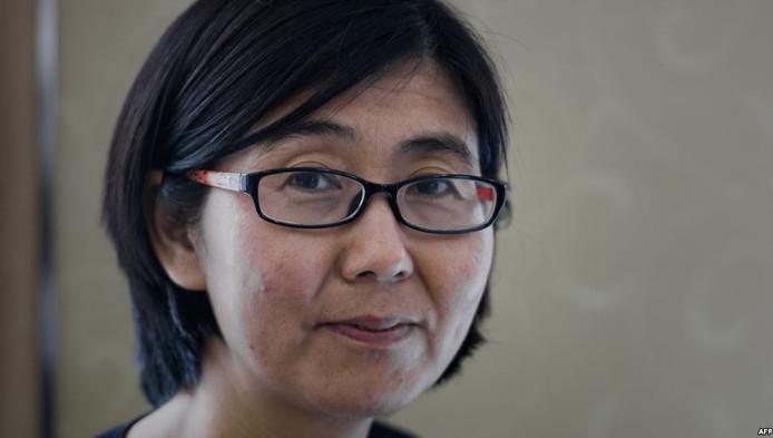 De Chinese advocate Wang Yu