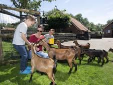 Betekent dichtdraaien subsidiekraan het einde van de kinderboerderij in Haaksbergen?