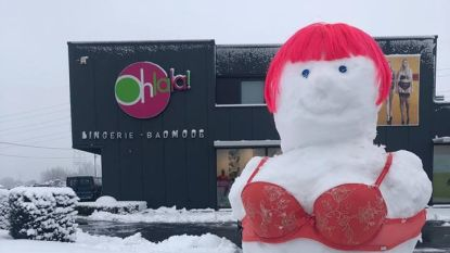 Het moet niet altijd een sneeuwman zijn…