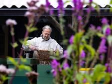 Imkervereniging in Cranendonck bestaat (minstens) een eeuw; 'bijen laten zich niet dwingen'