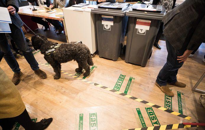 Stemlokaal Haagse Hout in Den Haag