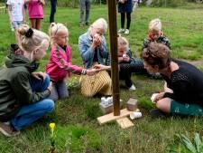 Nieuw Amersfoorts stadspark Elisabeth Groen nadert voltooiing: 'Mensen in de stad komen te weinig in de natuur'