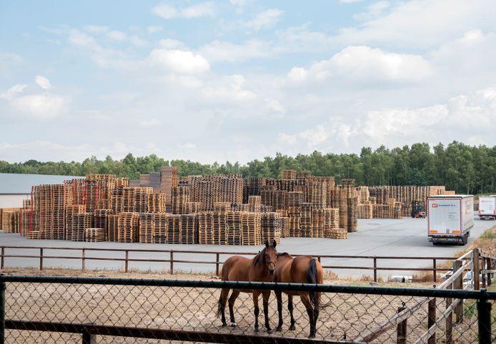 Nu de gemeente Ermelo eist dat palletbedrijf Ten Hove de in de open lucht gestalde pallets en illegaal gebouwde panden weghaalt, stapt het bedrijf naar de rechter.