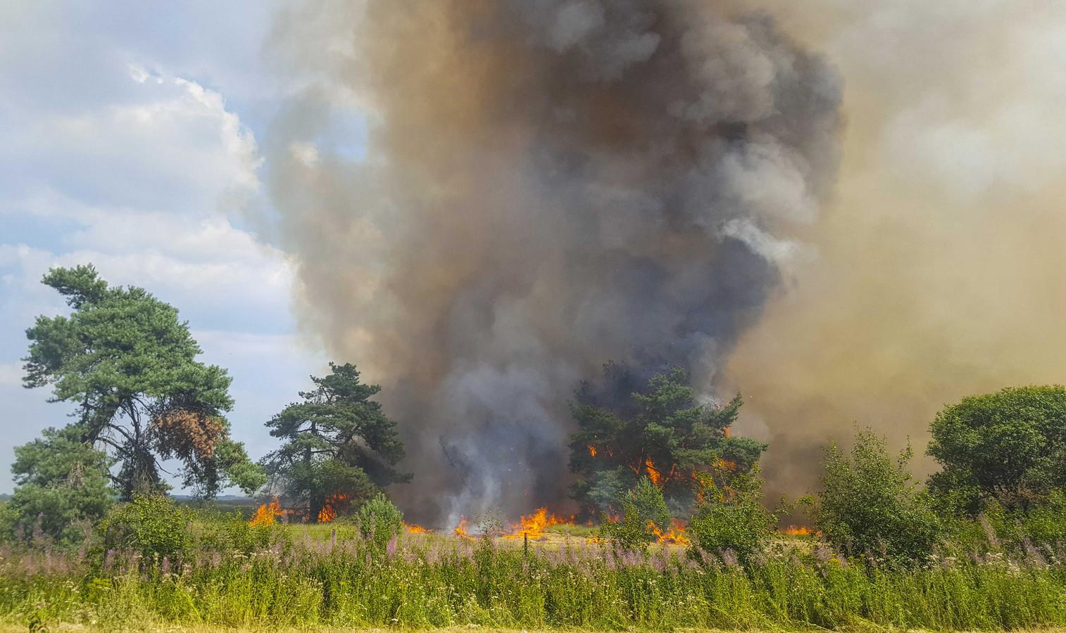 De natuurbrand bij De Hoge Veluwe, afgelopen dinsdag.
