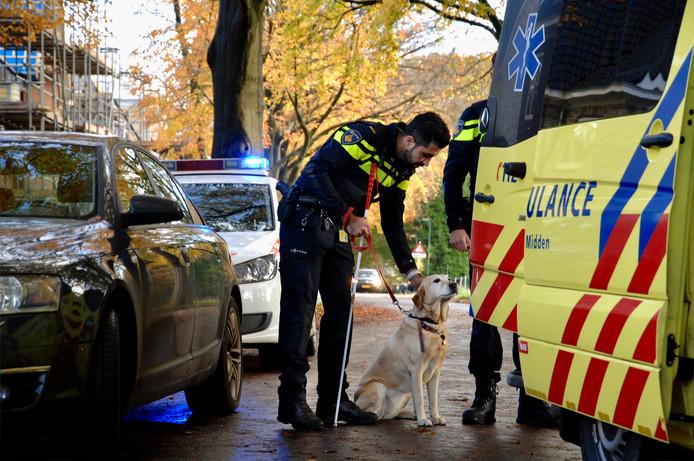 De blindengeleidehond ziet bezorgd dat het baasje in de ambulance gaat.