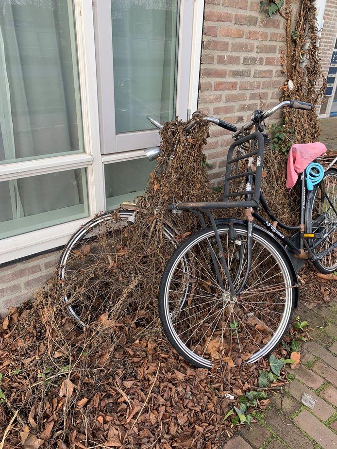 Deze fiets staat er al even
