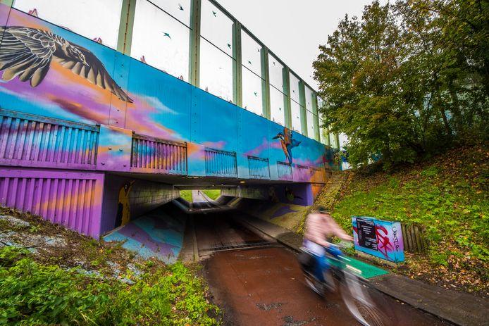 Bij de fietstunnels in de Enschedese zuidwijken zijn een aantal keren overvallen gepleegd.