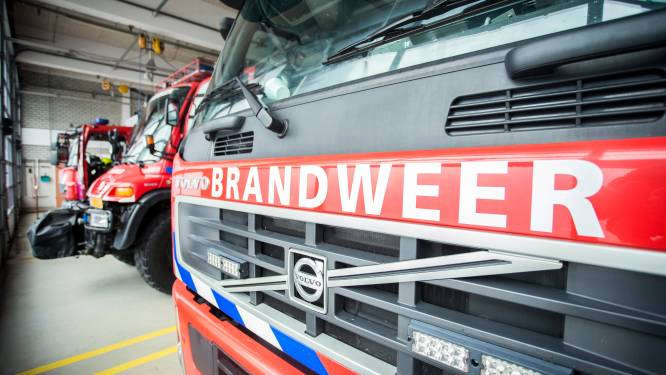 Serie branden in Assen: vier voertuigen vatten vlam in dezelfde nacht