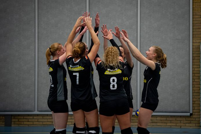 De sportclubs uit Wierden en Enter willen meer samenwerken. Op de foto: de volleybalvrouwen van WVC Volley.