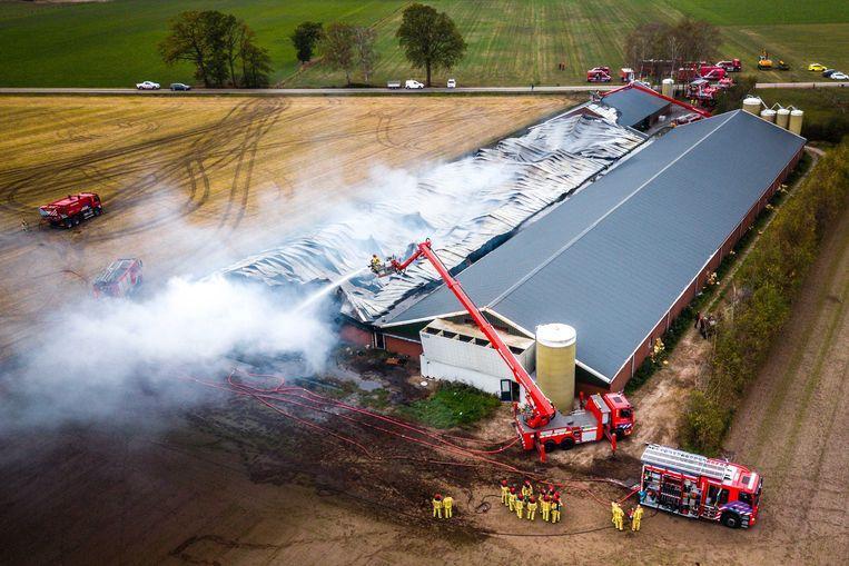 Luchtfoto van een stal in Heusden waar bij een brand ongeveer 4.000 varkens om het leven zijn gekomen, 2018.  Beeld ANP