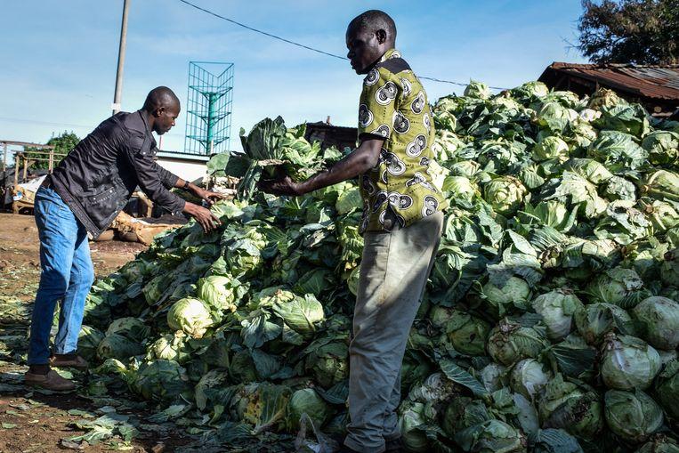 Een handelaar laat zijn partij groene kool achter, nadat de autoriteiten in Kisumu, West-Kenia, de sluiting van een openluchtmarkt hebben bevolen om de verspreiding van het coronavirus tegen te gaan, maart 2020.  Beeld Hollandse Hoogte / AFP