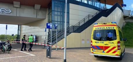 Treinen tussen Arnhem en Nijmegen rijden weer normaal na urenlange stremming